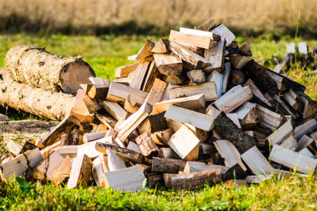 Fall Camping - Firewood