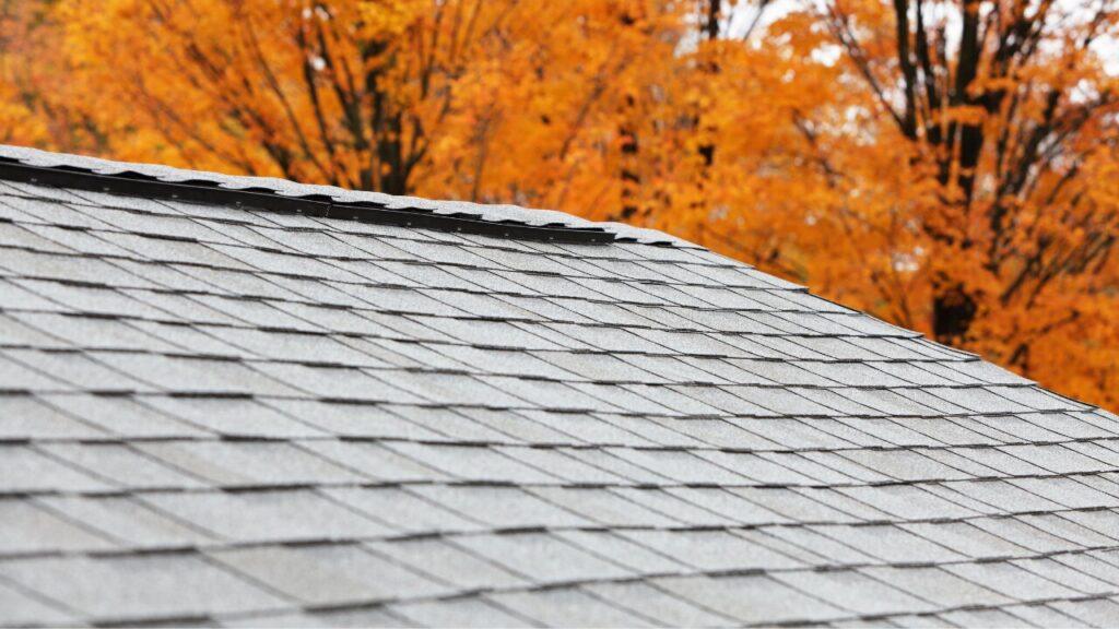 The Ridge Roofing